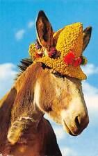 Beach Donkey, fancy hat, Sussex, Comic 1988