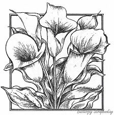 Calla Lillies In Rectangle Wood Mounted Rubber Stamp New NORTHWOODS PP8490 New