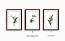 Botanical Wall Art Prints Set of 3x Monstera Fern Palm Leaves Green & Gold Line