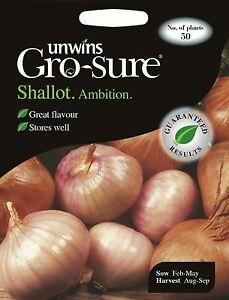 Unwins Pictorial Packet - Vegetable - Shallot Ambition F1 - 50 Seeds