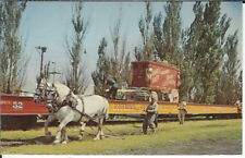 BB025 Percheron Circus Train Load Circus World Museum Baraboo 1960s-70s Postcard