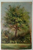 Antique Oil Impressionism Painting Miniature Tree Study circa 1902