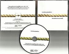 COWBOY JUNKIES Brand New World w/ RARE EDIT USA PROMO radio DJ CD Single 2007