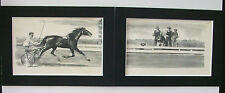 Prints Horse Wesley Dennis Harness Racing Diptych 1950 2 5x7 Bookplates Matted