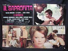 FOTOBUSTA CINEMA - IL SAPRO'FITA - V. MORICONI - 1974 - DRAMMATICO