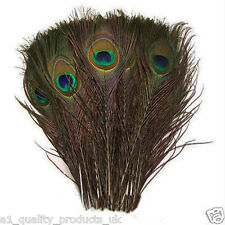 "50 x 100% Natural Peacock Feathers 10""- 12"" Tail for craft party genuine real"