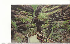 Moss Chamber in Cold Water Canyon  Wisconsin Dells  WI  Chrome Postcard 1257