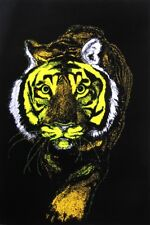 TIGER - BLACKLIGHT POSTER - 24X36 FLOCKED 52588