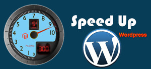 Speed Up Your WordPress Website Rank Higher Get More Traffic and Customers