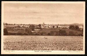 1920 CHULMLEIGH TUCKS POSTCARD DEVON