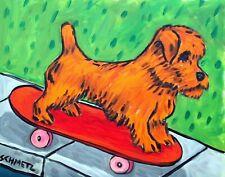 Norfolk terrier dog pet art 8.5x11 Print glossy Jschmetz skate boarding