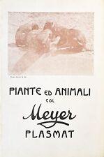 "Brochure ""Piante ed Animali col Meyer Plasmat"" (Italien)"