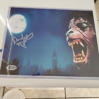An American Werewolf in London David Naughton Signed 8x10 Autograph Beckett COA