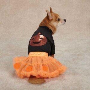 Orange Pumpkin Dog Costume By Zack & Zoey Polyester Nylon Smaller Sizes Unisex