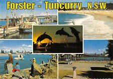 BR101974 forster tuncurry nsw dolphins wallis lake ship bateaux   australia