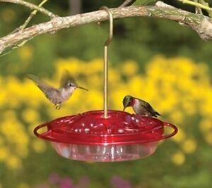 ASPECTS Little Fancy Rose HummZinger, 8 oz, HUMMINGBIRD FEEDER, Made In USA  #dm