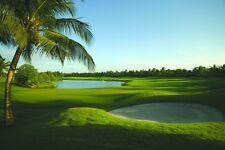 SURFANDDUNES.COM Travel Resort Vacation Domain Beach Hotel Booking Tourism $40k