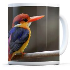 Toed Kingfisher Bird - Drinks Mug Cup Kitchen Birthday Office Fun Gift #16195