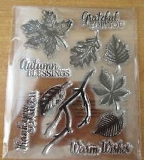 Selection of Clear Rubber Stamps - Autumn Leaves & Sentiments - BN