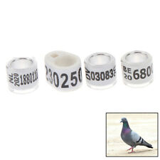2020 foreign ring pigeon foot ring with certificate identification r-Sl