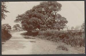 Postcard Thornham nr Hunstanton Norfolk view of The Lane posted 1906 RP