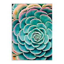"BILD Art Poster Succulent Leaves IKEA 19 ¾ "" x 27 ½ "" Cactus Print NEW"