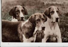 DA55.Vintage Postcard.Dogs. Hounds. Waiting for Master.