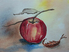 Vintage Apple Watercolor Study/Painting - Unsigned - Canada - Late 20th Century