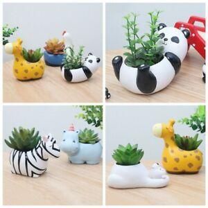 Cute Animal Desk Decor Flowerpot Resin Flower Pot Planter Succulent Plants New!