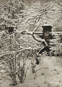 1950 Vintage JOSEF SUDEK Winter Garden Snow on Trees Original Photo Gravure Art