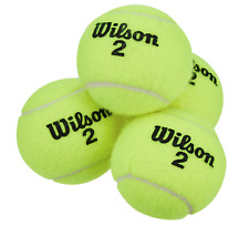 Wilson Championship Extra Duty Tennis Ball, 4 Piece