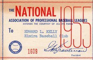 1955 NAPBL Minors Pass Ticket Willard Brown  19 HR/104 RBI (Negro League) HOF