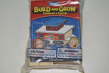 Lowe's Build and Grow Caboose Train Car Wooden Kit with patch