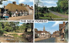 Hampshire: The New Forest - Multiview - Posted 1968