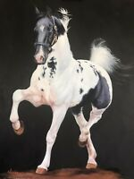 Nicolae Original Saddlebred Horse art oil painting on stretched canvas 24x30