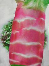 Vegatable seeds - Red Asparagus lettuce 30 seeds OrganicHeirloom NON-GMO
