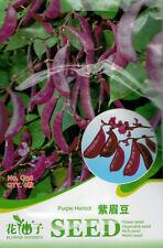 1 Pack 6 Purple Haricot Bean Seeds Lablab Purpureus Garden Vegetable C138