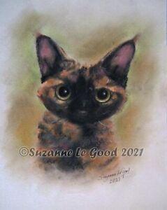 Devon Rex cat art painting pastels tortie hand painted original Suzanne Le Good