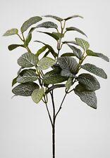 Fittoniazweig / Mosaikzweig 60cm JA künstlicher Zweig Fittonia Mosaikpflanze