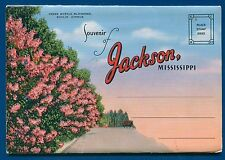 Jackson Mississippi ms Livingston Park Wilson bridge Belhaven college postcard