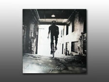 2010, Raleigh Bicycle Dealer Dvd, Contains Catalog, Logos, Images, Price List