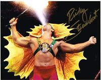 RICKY THE DRAGON STEAMBOAT HOF WWE WWF AUTOGRAPH 8X10 PHOTO AUTOGRAPHED !