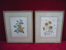 2 Beautiful, Old Pictures__Flowers__ Framed, behind Glass ___