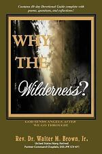 Why the Wilderness? : God Sends Angels after We Go Through! by Walter, Jr....
