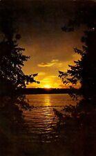"VINTAGE ""SUNSET"" Shinning WATERS Thru the Trees Chrome Postcard"