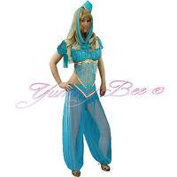 Fancy Dress Princess Costume Belly Dancer Arabian Women Bollywood Plus Size 6-18