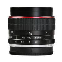 MEIKE MK-6.5mm F2.0 Fisheye Lens for Sony E-mount A6000 A6300 A6500 NEX 3 5 6 7