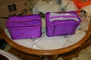 Lot of 2 Clinique pink small plastic make up cases