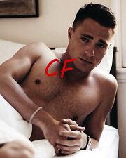 Colton Haynes 8 x 10 Photo Talented Beefcake Hunk Actor Arrow Gay Interest EB 59