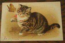 Antique Postcard Cat Chasing Butterfly 1908